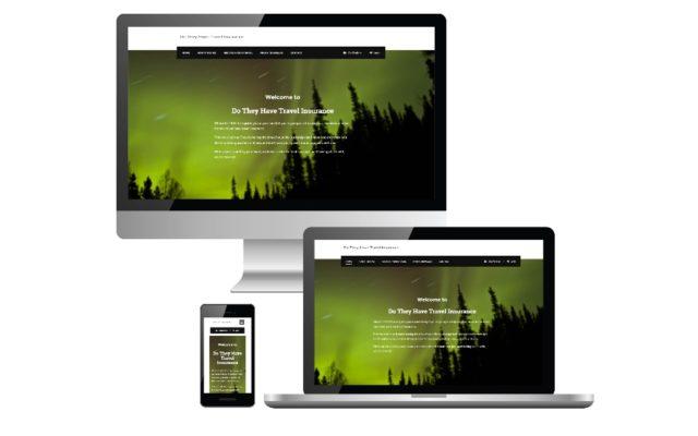 WordPress Web Development Project for DTHTI